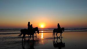 Geelong Hens Horse Rides